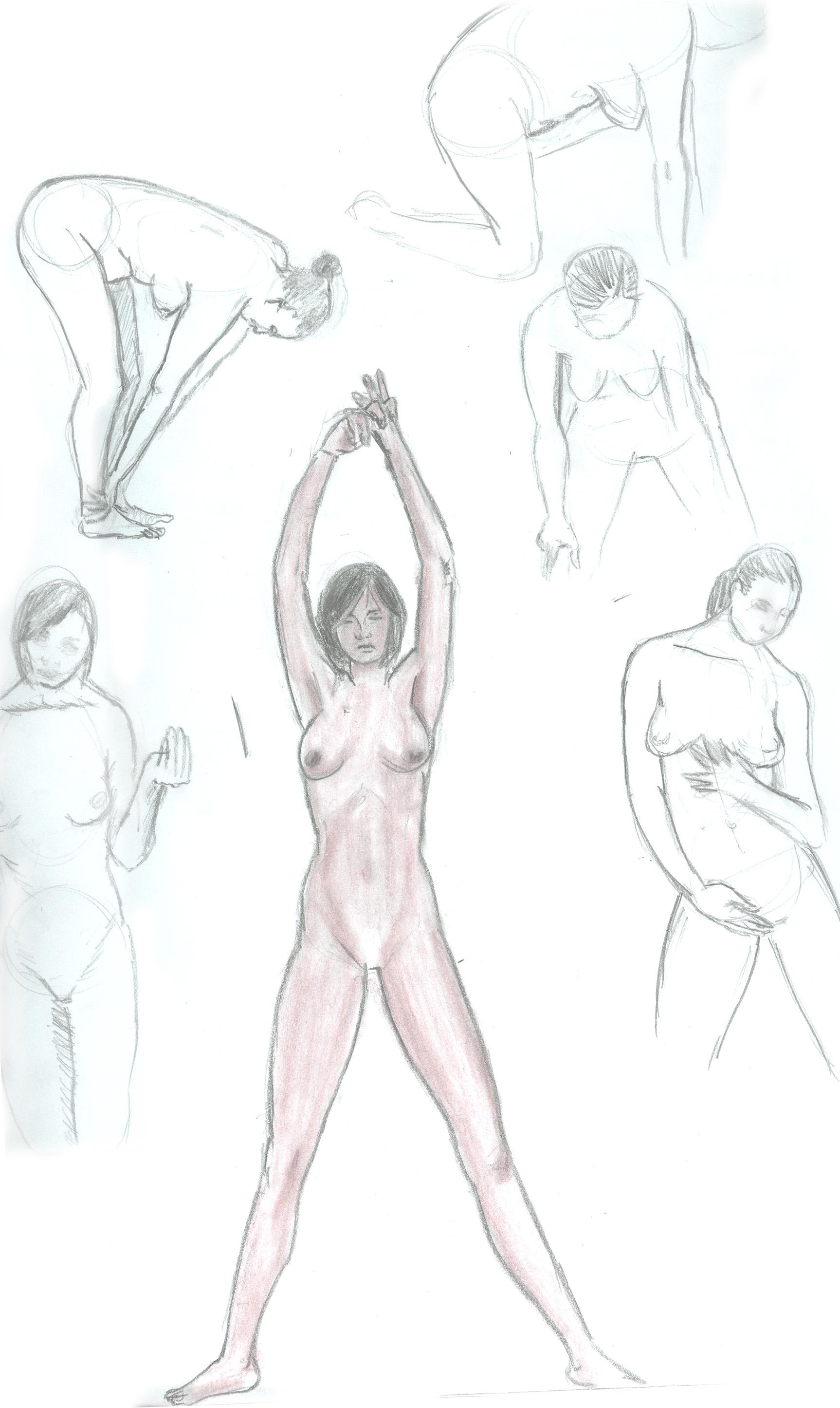 Anatomia Humana   CARBON ENTINTADO